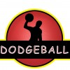 Dodgeballl League Registration